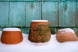 terracotta pots covered in white snow make an interesting winter photo